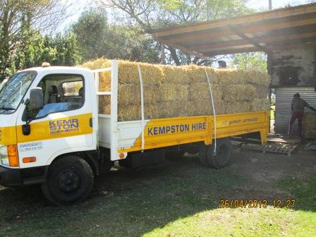 A big thank you to Di Kimber from Kempston truck Hire in Pinetown for donating a truck to us to collect staw for bedding in the Bluff. This gesture is well recieved and appreciated. A huge help to our rescue horses. THANK YOU from all at the Coastal Horse Care Unit.