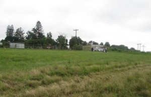 Site for the Training Center at our Rescue farm in Cato Ridge