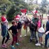 Sponsor a Pony Day