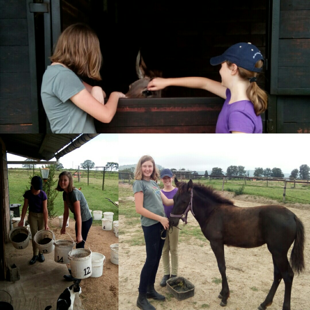 Ella and Amy meeting CHCU Kate (our very pregnant donkey), and helping to feed some of the horses